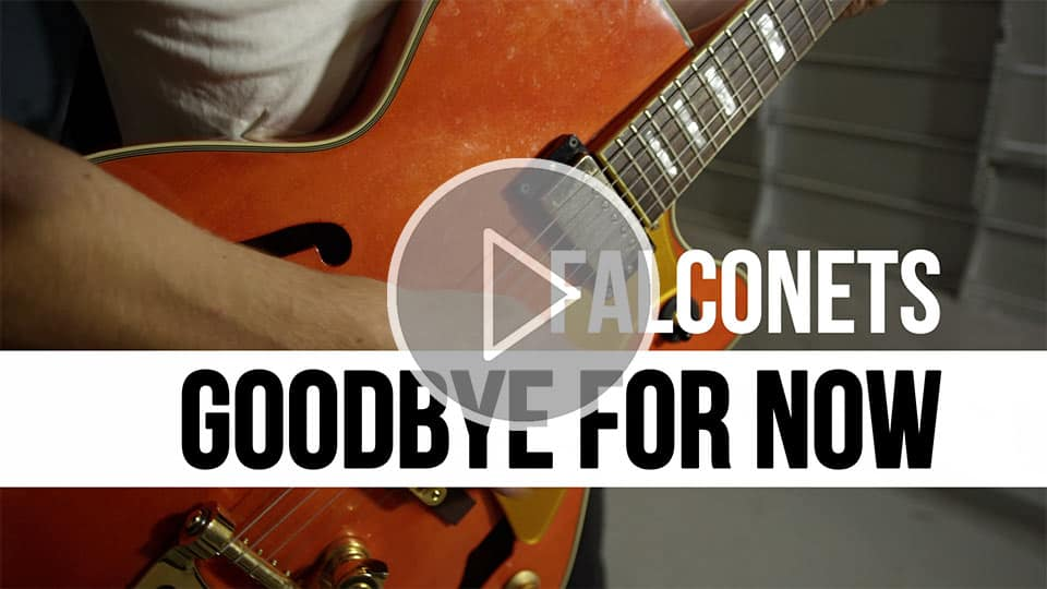 thumb-falconets-goodbyefornow@0,5x